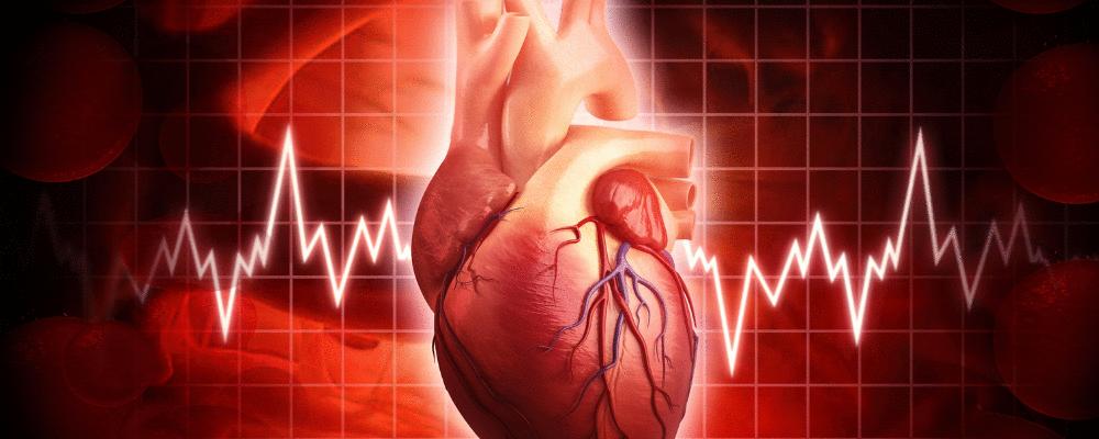 10 fatores de risco cardiovascular que todo profissional da saúde necessita saber