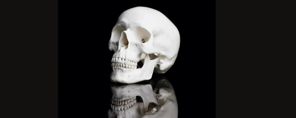 Gabinete de Curiosidades Médicas: Phineas Gage e o acidente mais famoso da história da medicina