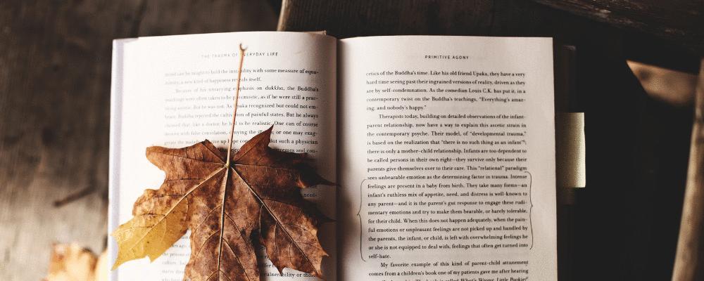 Medicina e Literatura: o médico como contador de histórias