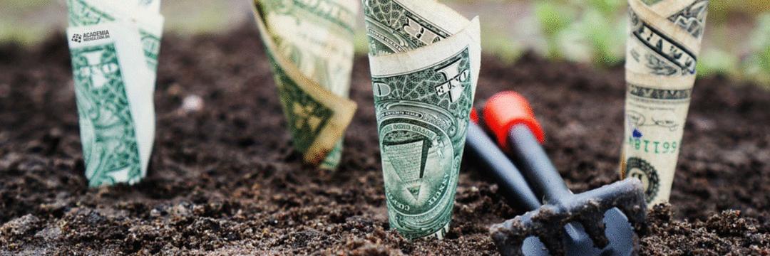 Enriquecendo com saúde: 4 dicas para desenvolver a sua inteligência financeira