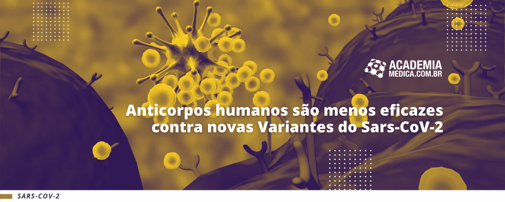 Anticorpos humanos são menos eficazes contra novas Variantes do Sars-CoV-2