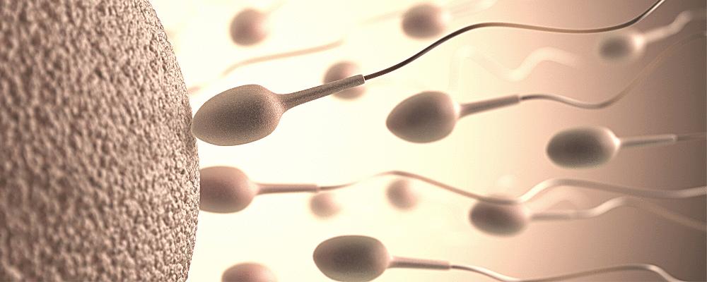 Novos critérios do CFM para utilização de técnicas de reprodução assistida no Brasil