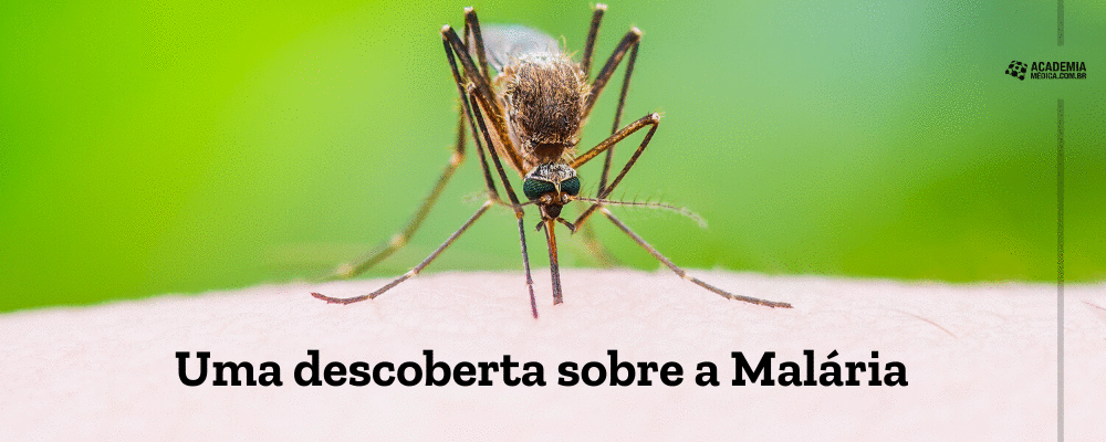 Uma descoberta sobre a Malária