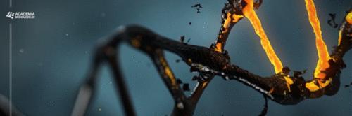 Quando as mudanças epigenéticas atingem o momento e o lugar errados, nosso comportamento é alterado