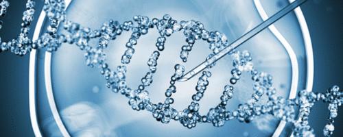 Atualização, pela OMS, de orientações para criação de mosquitos geneticamente modificados