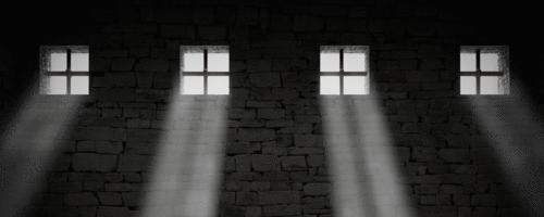 Quarentenas, hospícios, prisões:13 livros para você entender mais sobre História e Medicina