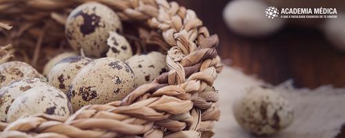 Sobre ovos, negócios e pessoas