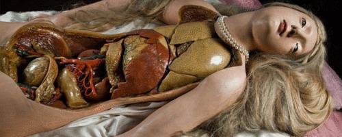 Gabinete de curiosidades Médicas: O flerte entre erotismo, ciência e morte nas Vênus Anatômicas
