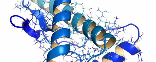 Estudo detalha atuação de proteína capaz de capturar metais livres associados a doenças neurodegenerativas