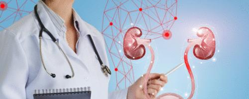 Urologia: uma especialidade clínico-cirúrgica