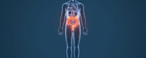 A revolução intestinal: microbiota, tecnologia e perspectivas do futuro