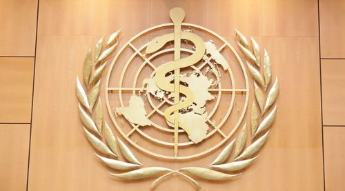 Medical Opportunities - Estágio na Organização Mundial da Saúde