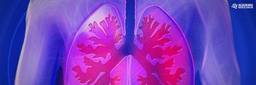 Tuberculose: não feche os olhos para ela