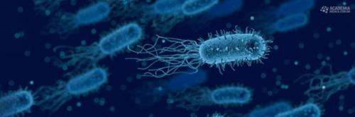 Ceftazidima-Avibactam: um novo horizonte para pneumonias hospitalares eassociadas à ventilação mecânica